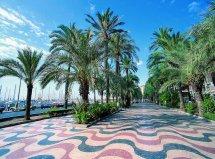 Packs Alicante